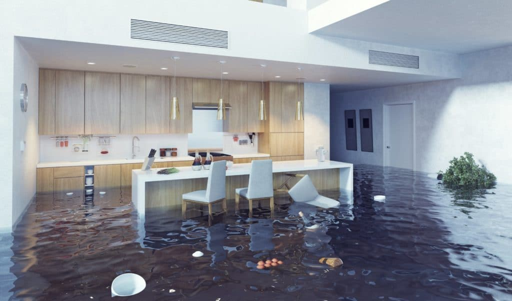 water damage quincy, water damage restoration quincy, water damage repair quincy, water damage cleanup quincy