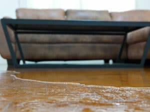 water damage restoration quincy, water damage cleanup quincy, water damage repair quincy