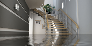 water damage cleanup quincy, water damage restoration quincy, water damage repair quincy